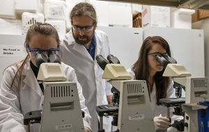 Jeremiah Smith and two graduate students are exploring the lamprey genome for clues to curing many human genetic diseases.